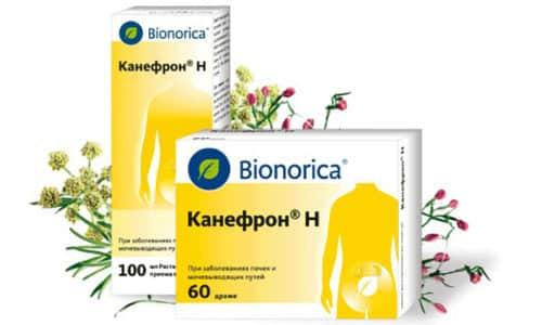 Канефрон - таблетки от цистита на основе комбинации лечебных растений (розмарин, корень любистока, золототысячник)