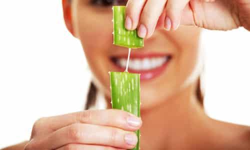 Лечение алоэ подразумевает очищение листа от шкурки и прикладывание такового на врос