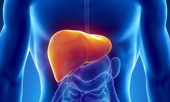 Развитие панкреатита может быть связано с нарушением функционирования желчной системы