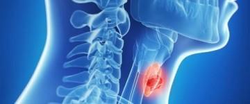 Что такое диффузные изменения паренхимы щитовидной железы