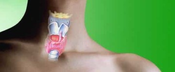 Что собой представляет коллоидный узел на щитовидной железе