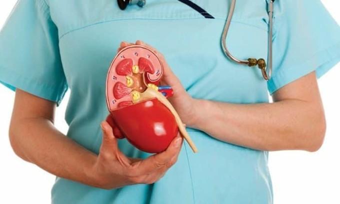 При хроническом цистите инфекция может переходить и на смежные органы. Чаще всего страдают почки