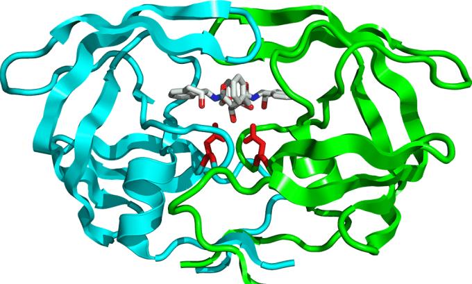 При употреблении творога вырабатывается протеаз — фермент, жизненно важный для расщепления белков