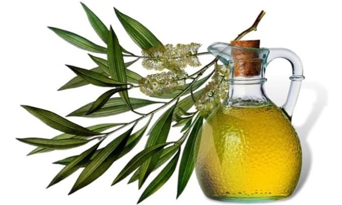 Масло чайного дерева следует использовать регулярно, многократно на поражённые участки тела, до выздоровления