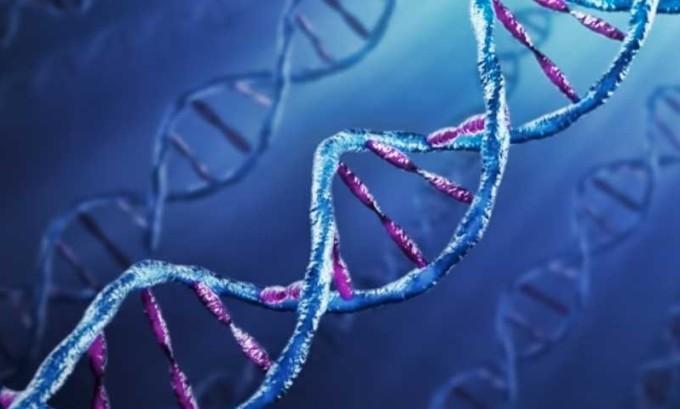 Заболевание может передаваться по наследству
