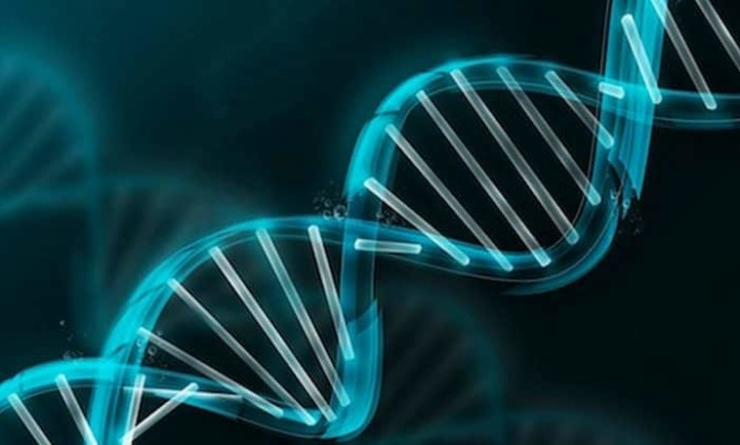 Генетически плохая предрасположенность может стать причиной проблем с щитовидкой