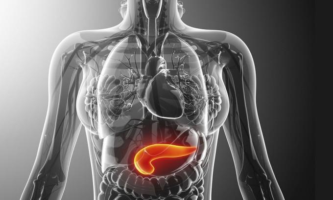Человек, у которого УЗИ выявило все признаки эхогенности железы поджелудочной, может иметь определенную степень воспаления поджелудочной