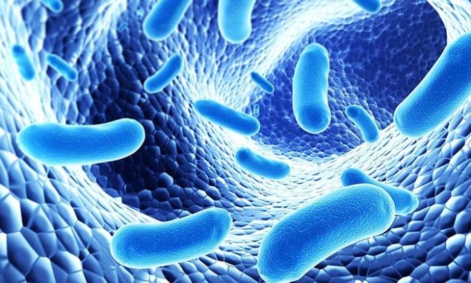Лекарства со временем склоннны убивать нужную микрофлору и негативно влиять на иммунность.