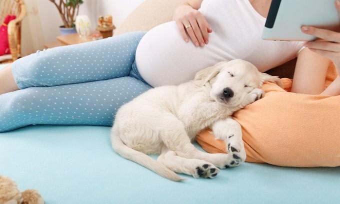 Болезнь появляется у тех женщин, которые в период вынашивания ребенка снизили свою физическую активность