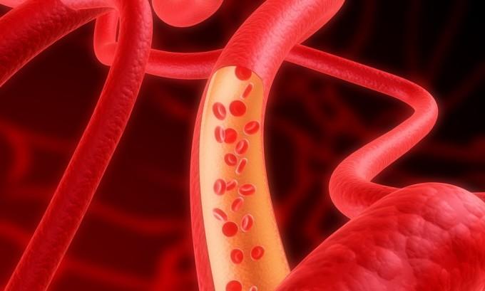 В регулировании давления крови участвуют тиреоидные гормоны