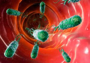 Ципрофлоксацин и алкоголь вызывают дисбактериоз