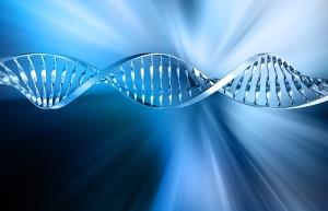 Цифран воздействует на ДНК бактерии