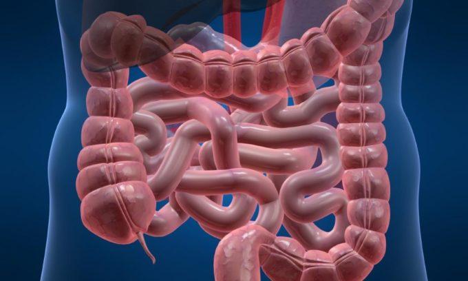 В период обострения болезни нарушается пищеварение