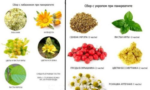 Травы при панкреатите для поджелудочной железы, лечение