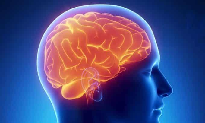 Повышенная активность гипофиза является причиной развития аденомы щитовидной железы