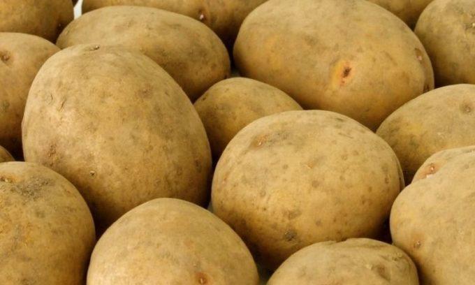 Традиционным способом лечения панкреатита являются выжимки из картофеля, свеклы или граната, которые принесут пациенту облегчение и помогут справиться с хронической формой заболевания