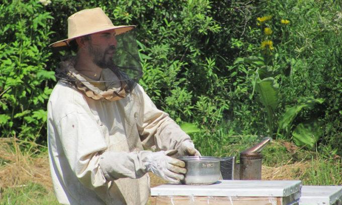 Мёд – уникальный природный продукт, полезное лакомство и лекарственное средство