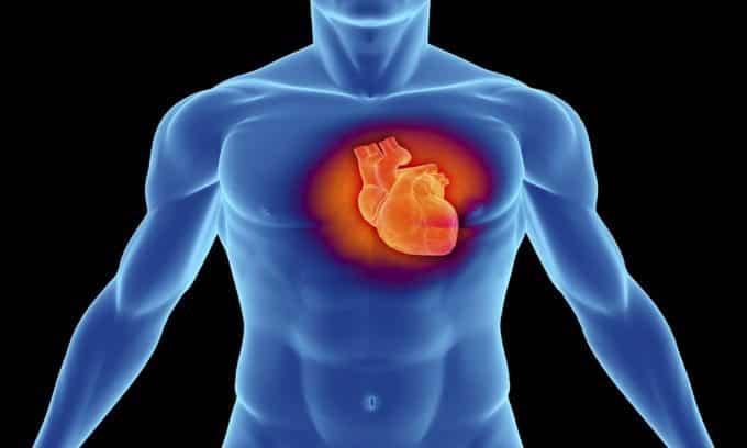 Симптомы болезни сердца проявляются чуть ли не в первую очередь при гипотериозе