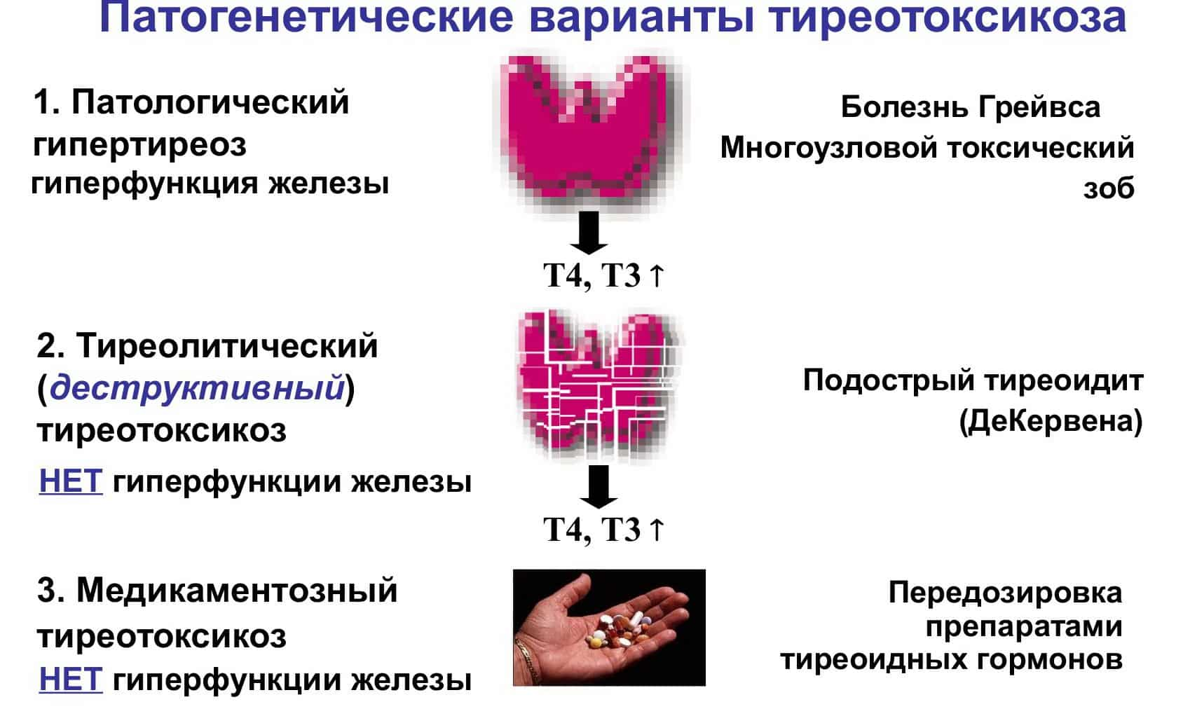 профилактика от паразитов у человека