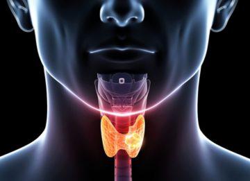 Каковы диффузные изменения щитовидной железы?