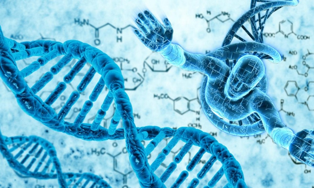 genetic information Genetic information is the information (data and instructions) in the genomeevery living thing has a set of genetic information that defines how it will respond chemically.