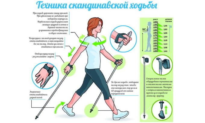 Заниматься ходьбой нужно обязательно под присмотром инструктора. При этом упражнении улучшается циркуляция крови в нижних конечностях, вызывая разгрузку вен