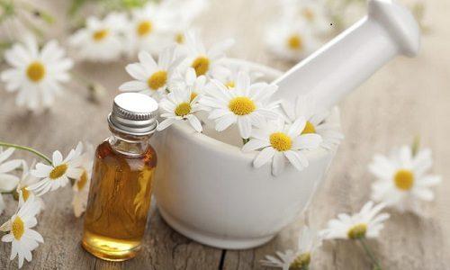 По народным методам можно приготовить крем от варикоза из цветков ромашки и растительного масла